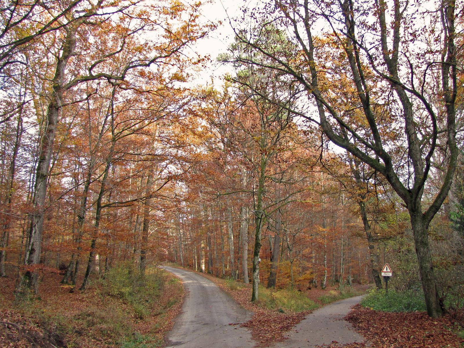Naturpark Schönbuch: Gemeinde Ammerbuch